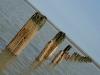 008 - Rye Harbour