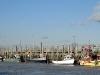 009 - Rye Harbour