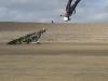 004 - Sand/sea kiters