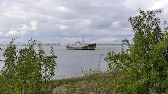 Shoreline walk 62