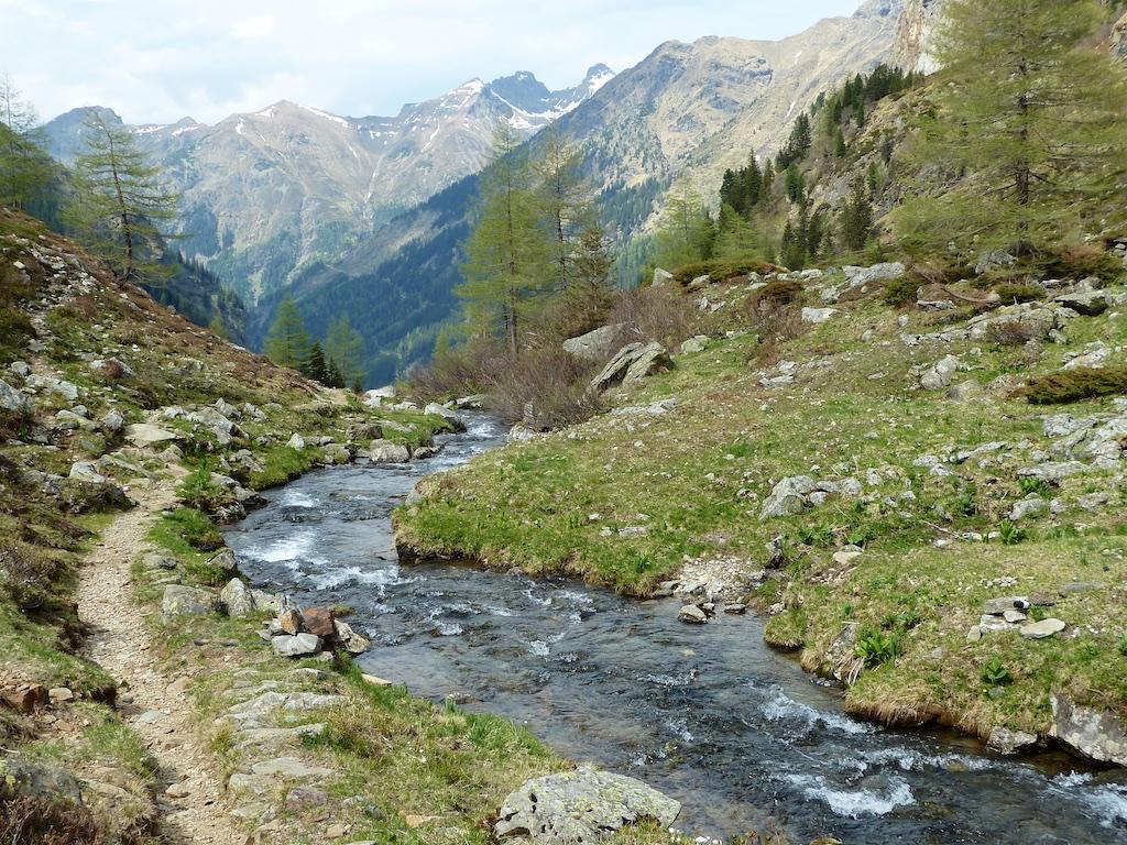 austria 22