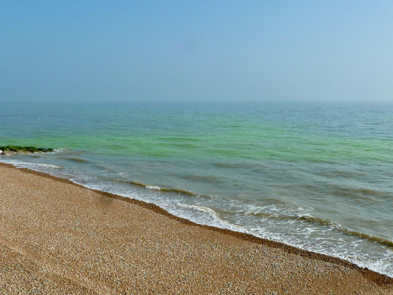 Green sea algae seen off St Leonards, East Sussex