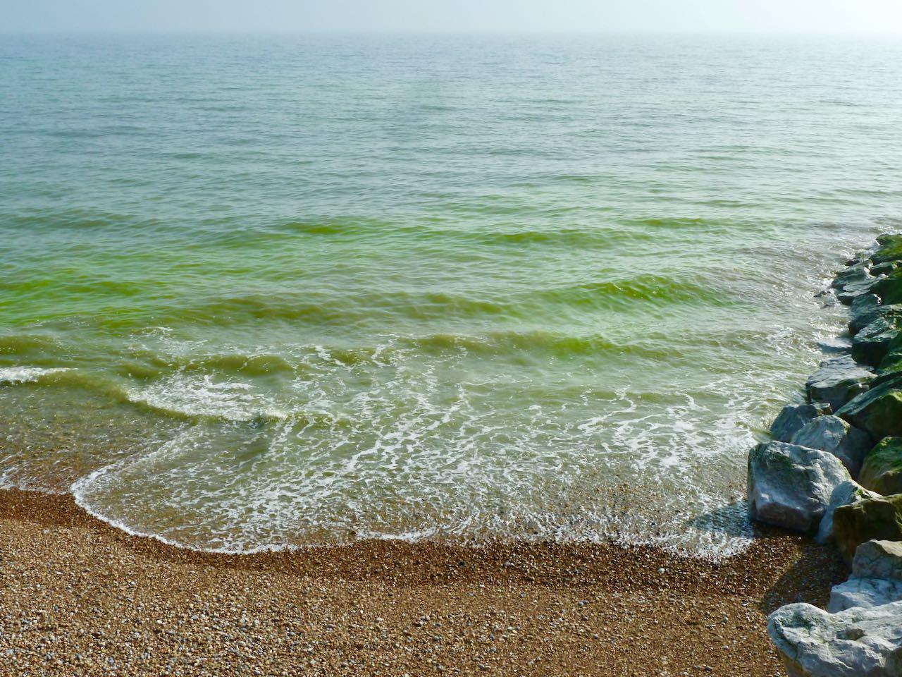 Green sea algae seen of St Leonards, East Sussex